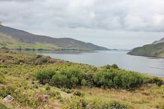 IMG_3275 (avsfan1321) Tags: ireland killaryfjord countygalway countymayo connemara wildatlanticway fjord lake water landscape mountains