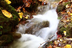 #Ain_Zebdeh #lebanon #waterfall #autumn #photography #nature_photography #river #photooftheday #photo_art (salam.jana) Tags: ainzebdeh lebanon waterfall autumn photography naturephotography river photooftheday photoart