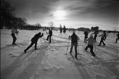 Nordic Skiing 1983