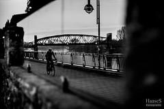 Elbuferpromenade, Magdeburg (SaschaHaaseFotografie) Tags: magdeburg elbe sachsenanhalt deutschland germany sascha haase tbiggums sony canon schleinufer street hubbrücke