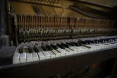 The Piano (superzookeeper) Tags: canoneos5dmarkiv ef2470mmf28liiusm 5dmk4 5dmkiv hk hongkong yuenlong eos digital street abandoned ruins abandonedschool school bokeh abandonedpiano piano brokenpiano