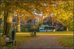 13-11-17 Syntus Mercedes-Benz Citaro CNG 5202, Apeldoorn - Oranjepark (Julian de Bondt) Tags: syntus mercedes benz citaro cng apeldoorn oranjepark