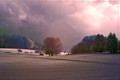 2017 11 18 Odenwald 720nm IR - 01 (Mister-Mastro) Tags: ir infrared 720nm