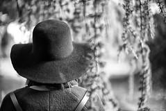 La capeline (Mathieu HENON) Tags: leica m240 noctilux 50mm noirblanc blackwhite monochrome france cèdre bleu pleureur capeline chapeau châtenaymalabry vallée aux loups arboretum