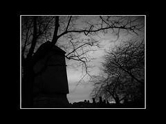 getting dark early (vfrgk) Tags: dusk lowlight trees winter noleaves buildings branches monochrome blackandwhite bnw bw nature urbannature artistic atmospheric tranquility calmness serenity sky dark lastlight