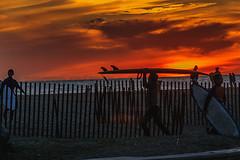 Sunset at Santa Monica Beach taken on November 14th 2017 (morgan@morgangenser.com) Tags: beach orange people santamonica blue cars parkinglot photobymorgangenser amazing beautiful bridge color digital friday iso100 jpg night nikon ocean pretty raw red reflection sand shadow special dusk streaks yellow palmtrees santamonicamirror