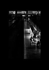 Railway Station 3 (amargureiro) Tags: train transportation railway blackandwhite bw blancoynegro black contrast people travel street streetphotography city nikon 1870mmf3545 lights naturallight