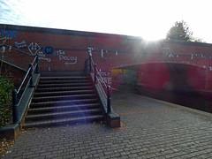Walsall Canal - Wednesbury - Monway Bridge - steps (ell brown) Tags: wednesbury blackcountry sandwell westmidlands england unitedkingdom greatbritain markettown canals walsallcanal hallensdrive hallensdr tree trees bridge monwaybridge moorcroftdrive moorcroftdr steps