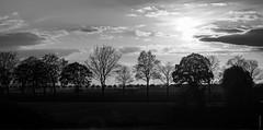 Abend am Niederrhein (juergenjaq) Tags: blackwhite landscape landschaft publish himmel niederrhein jürgenjaquemotte abend sky evening wolken clouds kleve nordrheinwestfalen deutschland de