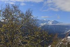 nature (bulbocode909) Tags: valais suisse montagnes nature arbres automne paysages nuages neige bleu vert