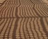 tracing (Cosimo Matteini) Tags: cosimomatteini ep5 olympus pen m43 mzuiko45mmf18 firenze florence pavement shadow tracing