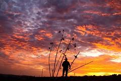 Matinales (arapaci67) Tags: cielos amanecer rojo red villanuevadelareina jaen andalucía spain naturaleza nature libre sequia lluvia nubes