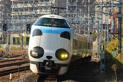 Panda run on the rail (Teruhide Tomori) Tags: railway train japan japon jr japanrailway railroad pandakuroshio jrwest limitedexpress 287系 yamazakistation tokaidoline kyoto 京都 山崎駅 東海道本線 パンダくろしお 日本 特急 電車 鉄道 列車 島本町