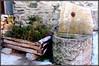 Inverno a Lillaz (magister111) Tags: aostavalley valdaosta