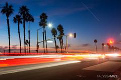 Alyssa Mize_DSC_9423 (alyssamize) Tags: exposure longexposure huntingtonbeach palmtree palms trees sunset exposures highway pch pacificcoasthighway ocean beach socal waves wave surf surfing surfcityusa traffic