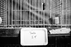 ein bisschen Frieden (chipsmitmayo) Tags: minolta xd7 rokkor 50mm f14 kodak trix 400 analog film schwarzweiss kleinbild labor sauerland fiddy schmallenberg tiere animals pappe fünfer heiermann bird pidgeon taube sale gone schau