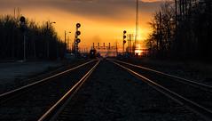 Evening Local (Kevin Tataryn) Tags: evening freight coteau cn cnr canadiannationalrailway railway nikon d500 1755 sundaylights