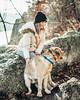 Focus. (HelloI'mJulia.) Tags: dog lab goldenlab englishlab fujifeed fuji xt2 fujixt2 fujifilmxt2 35mmf14 35mm doggy pup