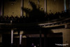 Vinicio Capossela@Teatro Politeama Pratese (Valentina Ceccatelli) Tags: vinicio capossela viniciocapossela ombre shadows inverno winter tour 2017 prato teatro politeama pratese italy tuscany music concert people crowd musicphotography musicphotographer