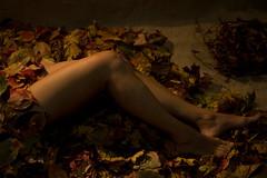 tabula rasa (#mimesi) Tags: legs gambe foglie leaves corpo body autunno autumn newlife