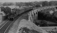 Exmouth Viaduct (21c101) Tags: exmouth devon britishrailways viaduct 262t lswr southernrailway