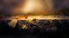 november.rain (_andrea-) Tags: snail schnecke rain regen herbst autumn autumnleaves sonya7m2 objektiv mount carlzeiss planart1450 bokehjunkie bokehshots licht light raindrops rainy november