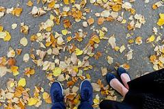 Autunno a Vercelli (STE) Tags: vercelli pov autunno autumn fallen foglie gialle yellow leaves cadute scarpe shoes sony rx100m4