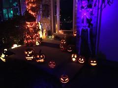 IMG_8034 (winchesterhollow) Tags: halloween halloween2017 jackolanterns pumpkins