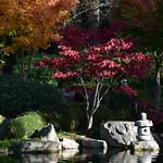 Kyoto Garden / Nov '17 thumbnail