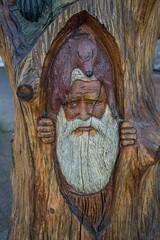 DSC_7919 (Copy) (pandjt) Tags: hope hopebc britishcolumbia carving carvings chainsawcarving sculpture publicart artwalk hopeartwalk woodcarving artwork