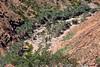 IMG101_1587 (mikkifox) Tags: yemen 2009 socotra bike mikkifox