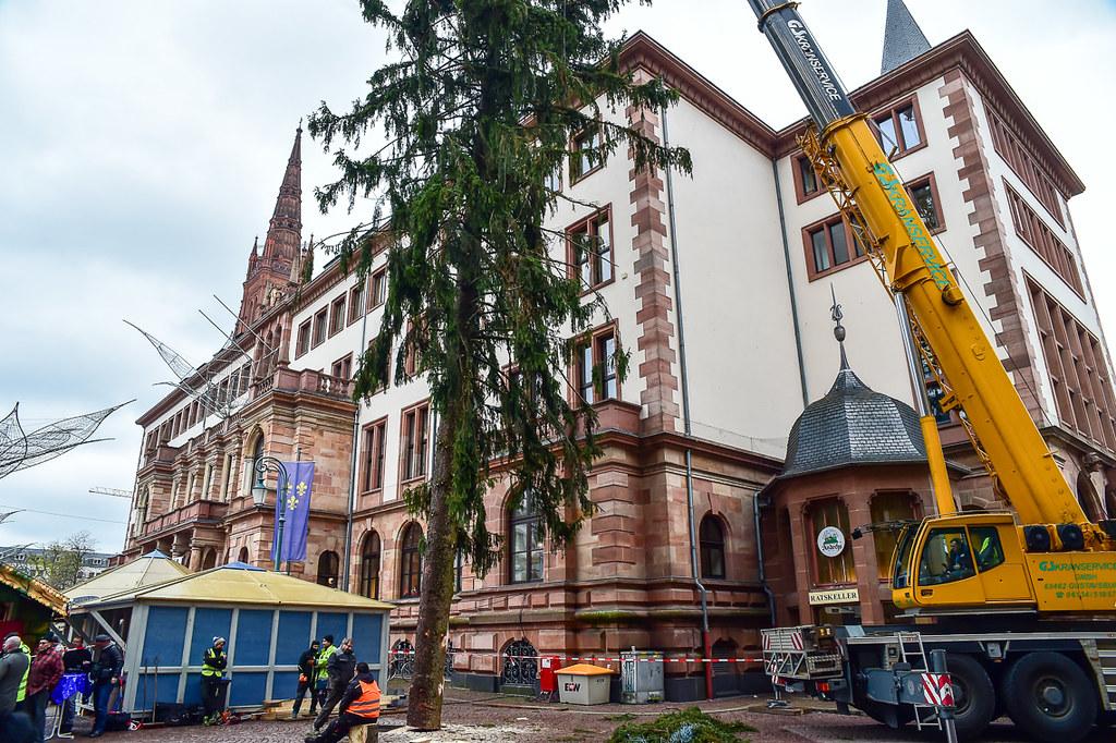 Weihnachtsbaum Service.The World S Best Photos Of Weihnachtsbaum And Wiesbaden Flickr