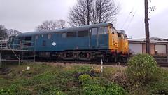2x Class 31s Weardale Railway (Uktransportvideos82) Tags: weardalerailway class31 traintochristmastown