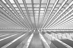 walk of lines (ohank1951) Tags: shadows abstract bw blackandwhite monochrome architecture steel concrete glass lines curves sky gare station bahnhof calatrava luikguillemins luik lüttich liègeguillemins belgië labelgique belgium canoneos1100d efs1022mmf3545usm