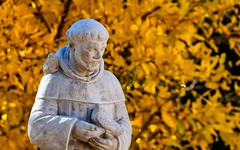 St Francis in my backyard with a backdrop of golden fall leaves (Kerstin Winters Photography) Tags: minimalistisch minimalism minimal simple fallcolors autumncolors colors autumn garten yard d5500 photography fotografie sigma nikon flickr nikondigital nikondsl foliage yellow gelb kunst art newmexico albuquerque blätter leaves leaf harvest outdoor stfrancis statue