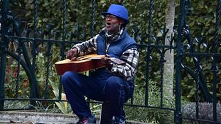 Cantor de rua, em frente ao Rijks Museum