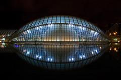 eyeball (ohank1951) Tags: reflections longexposure nightview cityofartsandscience ciudaddelasartesyciencias cac calatrava valencia spanje spain canoneos80d efs1022mmf3545usm