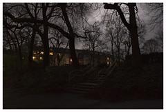 EVENING WALK (4) (der zweite blick!) Tags: andreasjurgenowski cologne derzweiteblick der2teblick deutschland germany köln kölnnippes nordrheinwestfalen northrhinewestfalia nrw abendspaziergang eveningwalk nippesertälchen abend evening dunkel dark park herbst autumn