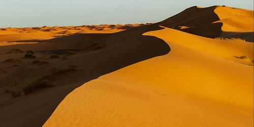 Am späten Nachmittag in der Sahara