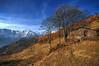 l'Autunno #09 (Roberto Defilippi) Tags: 2017 902017 rodeos robertodefilippi nikond7100 nikkor2470mmf28 autunno autumn piemonte angrogna montagna mountain
