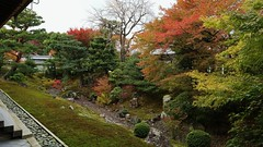 Autumn River Valley Zen-Garden / Shokokuji Inner Garden 京都 相国寺 (maco-nonch★R) Tags: temple templo japanischer japanesephotographer japon japonés japan japanese buddhism 相国寺 landscapegarden 枯山水 autumn leaves tree garten zengarden japanesegarden zen zentemple 禅 禅寺 shokokuji eosm5 canon manualexposure 裏方丈庭園 muromachiperiod 室町時代 old nobemver 秋