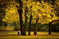 IMGP9648-1 (angel.doychinov) Tags: smc pentaxm 135mm k5 autumn sofia bulgaria pentaxflickraward