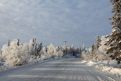 (Camusi) Tags: canada nwt northwestterritories northof60 nord north territoiresdunordouest tno yellowknife winter snow neige white blanc hoarfrost frima geléeblanche gelée trees arbres ghosttrees december decembre ratlake neighborhood quartier home maison road chemin conmine canon eos 60d
