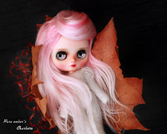 Charlotte <3 (pure_embers) Tags: pure embers middie blythe doll dolls photography uk laura england girl pureembers charlotte emberscharlotte pink alpaca candyfloss hair reroot autumn leaves smilte