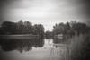 Britzer Garten - Berlin (elisachris) Tags: britzergarten berlin park natur nature brücke brigde sepia sonya7s rokkor 35mm manuallens vintageoptica landschaft landscape