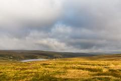 Huddersfield Hills Aug 2017 110 (Mark Schofield @ JB Schofield) Tags: hills huddersfield moors moorland pennines pennineway wessenden yorkshire wessendenhead landscape eos 5dmk4 canon