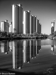 171030 Tianjin-02-B&W.jpg (Bruce Batten) Tags: photographicstylesandtechniques plants subjects reflections buildings lakesponds businessresearchtrips china shadows locations trips occasions urbanscenery tianjin bw trees lighthouses tianjinshi cn