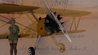 Air Mail Delivery SWAK