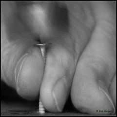 Hammer and Nail (Can You See What I See?) Tags: macro hammer nail fingertips betweenthefingertips macromondays