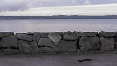 The Wall (Housemill) Tags: stenmur mur wall water vatten vättern geometri geometry horizontal sweden sverige huskvarna lumix lx5 panasonic pointandshoot pointshoot
